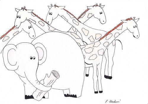 Elephantus et camelopardales